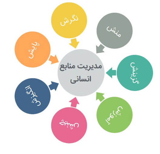 7 بخش مدیریت منابع انسانی