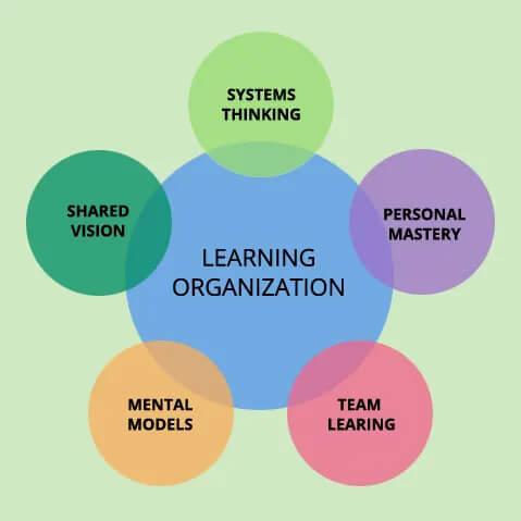 5 بعد مهم سازمان یادگیرنده